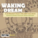 Waking Dream (remixes)