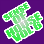 VARIOUS - Sense Of House Vol 6 (Front Cover)