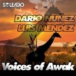 NUNEZ, Dario/LUIS MENDEZ - Voices Of Awak (Front Cover)