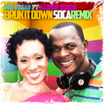 MR VEGAS feat ALISON HINDS - Bruk It Down (Front Cover)