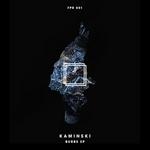 KAMINSKI - Burbs EP (Front Cover)