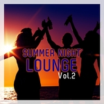 VARIOUS - Summer Night Lounge Vol 2 (Front Cover)