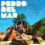 DEL MAR, Pedro/VARIOUS - Playa Del Lounge 3 (Front Cover)