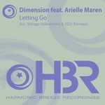 DIMENSION feat ARIELLE MAREN - Letting Go (Front Cover)
