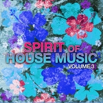 VARIOUS - Spirit Of House Music Vol 3 (Front Cover)