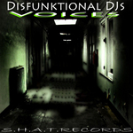 DISFUNKTIONAL DJS - Voices (Front Cover)