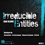 BLUME, Dan - Irreducible Entities (Front Cover)