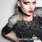 Rocking Down The House: Electrified House Tunes Vol 11