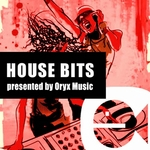 VARIOUS - House Bits Volume 3 (Front Cover)