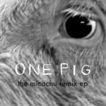 One Pig