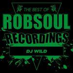 Best Of DJ W!LD