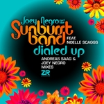 Dialed Up (Andreas Saag & Joey Negro mixes)