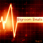 Bigroom Beats Vol 1
