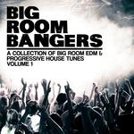 Bigroom Bangers Vol 1