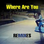 Where Are You (remixes)