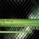 Pride District Deep New York Vol 2 (remixes)