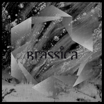 BRASSICA - Temple Fortune EP (Front Cover)