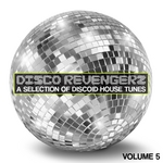 Disco Revengers Vol 5 (A Selection Of Discoid House Tunes)