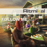 Follow Me (remixes)