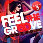 Feel The Groove Vol 5:A Blistering House & Tech Selection