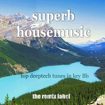 PADURARU/VARIOUS - Superb Housemusic (Top Deeptech Tunes In Key Bb) (unmixed tracks) (Front Cover)