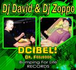 DJ DAVID/DJ ZOPPO - Dcibel! (Front Cover)