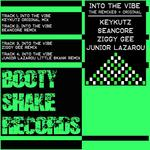 Into The Vibe (remixes)