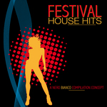 VARIOUS - Festival House Hits (Front Cover)