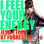 I Feel Your Energy