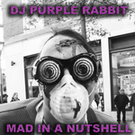 DJ PURPLE RABBIT - Mad In A Nutshell (Front Cover)
