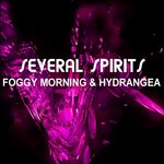 SEVERAL SPIRITS - Foggy Morning & Hydrangea (Front Cover)