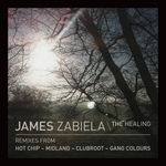 ZABIELA, James - The Healing (Front Cover)