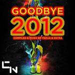 TEZIJA & KEYRA/VARIOUS - Goodbye 2012 (The DJ Mix Edition) (Front Cover)