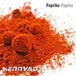 PAPRIKA - 2 1 (Back Cover)