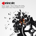 SEZER UYSAL - She Is Killing Me Softly (Front Cover)