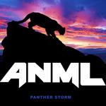 Panther Storm