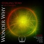 Wonder Why (remixes)
