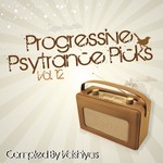 Progressive Psy Trance Picks Vol 12