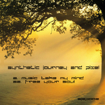 SYNTHETIC JOURNEY/PIXEL - Music Take Your Mind (Front Cover)