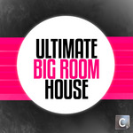 Ultimate Big Room House
