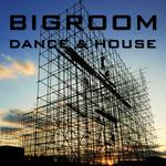 Bigroom Dance & House