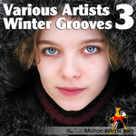 Winter Grooves Vol 3