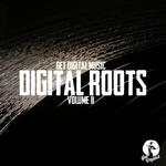 Get Digital Presents Digital Roots Volume II (unmixed tracks)