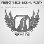PERFECT VISION/DEMY YORTH - Baikal (remixes) (Front Cover)