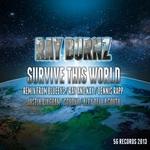 Survive This World (remixes)