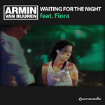 Waiting For The Night (remixes)