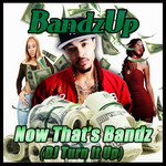 Now That's Bandz: DJ Turn It Up (remixes)