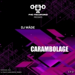 DJ Wäde - Carambolage (Front Cover)