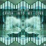 Crash Into My Love
