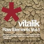 Raw Elements Vol 1